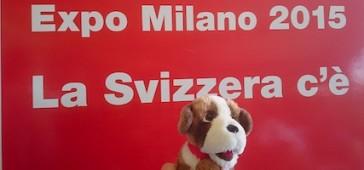 Padiglione Svizzera Expo 2015: ci siamo