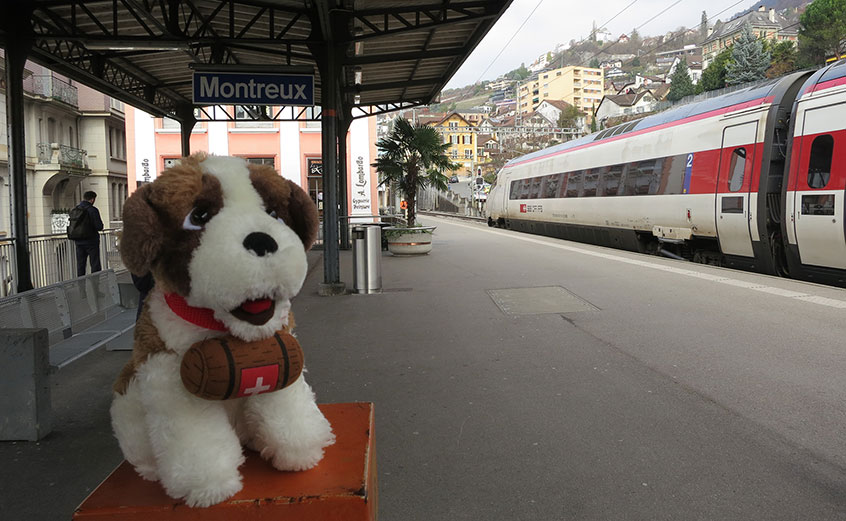 Svizzy a Montreux
